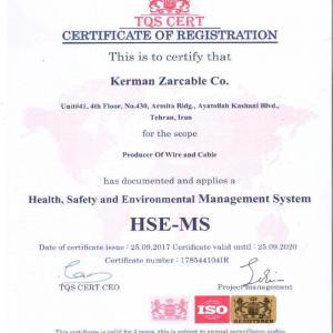 HSEMS Standard